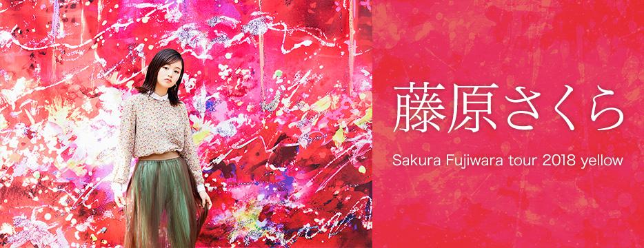 Sakura Fujiwara tour 2018 yellow