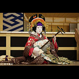 シネマ歌舞伎『阿古屋』