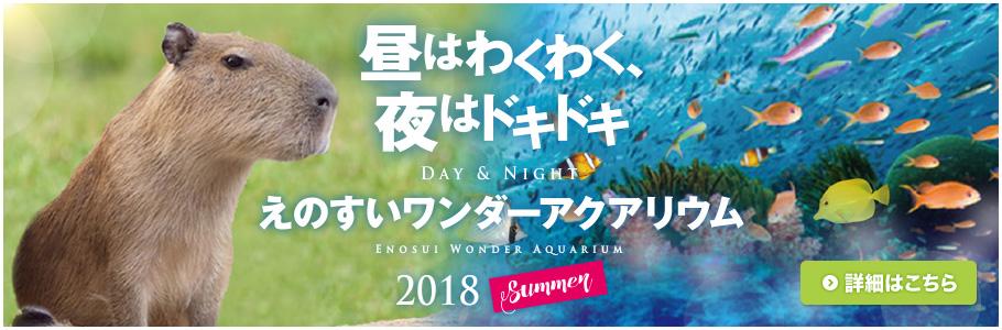 えのすいワンダーアクアリウム 2018 Summer