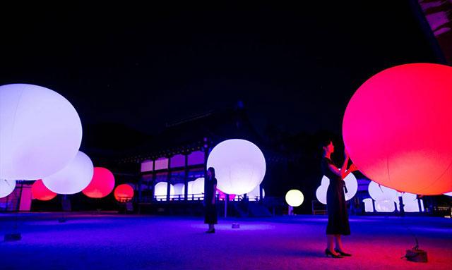 浮遊する、呼応する球体 -下鴨神社