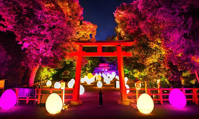 下鴨神社(京都)でチームラボ「下鴨神社糺の森の光の祭Art by teamLab‐ TOKIO インカラミ」が令和元年8月に開催