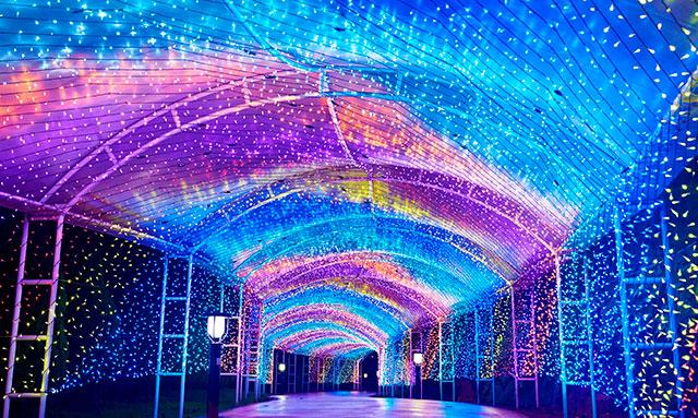 横浜・八景島シーパラダイスイルミネーションイベント