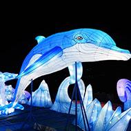 今冬、シーパラが神秘的な光の世界に包まれる! 横浜・八景島シーパラダイス