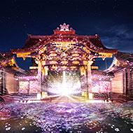 桜まつりで「FLOWERS BY NAKED 2020 -桜- 世界遺産・二条城」開催
