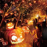長崎・ハウステンボス「花の街の大収穫祭」開催中