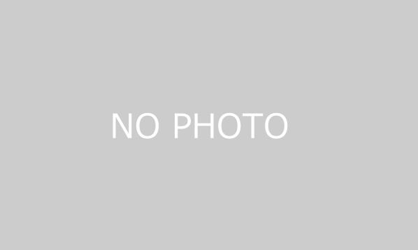 2018年全日本スーパーフォーミュラ選手権 最終戦 第17回JAFグランプリ / FIA WTCR Race of Japan〔10/26(金)~10/28(日)〕