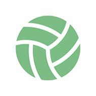 スポーツ 常設 バレーボール