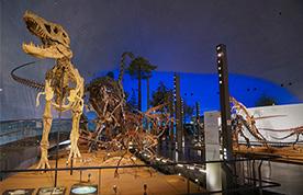 1F「恐竜の世界」
