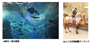 新江ノ島水族舘&よこはま動物園ズーラシア セット券