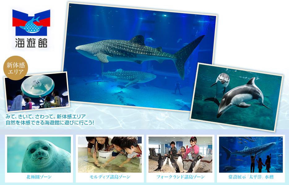 世界最大級の水族館 海遊館